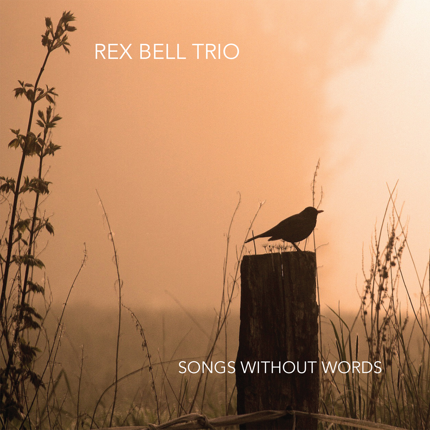Rex-Bell-Trio-Songs-Without-Words-CD-Baby-Cover-Art